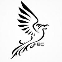 Phoenix-8c2